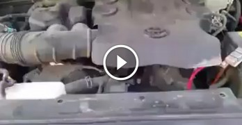 Guy hears a whining noise in his truck, when he finds the problem? LMAO!