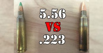 .223 vs 5.56 — What's the difference?