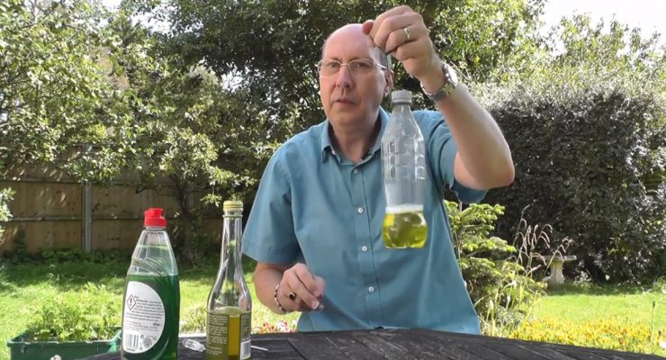 How To Make A Homemade Fly Trap For House Flies, Fruit Flies, And More